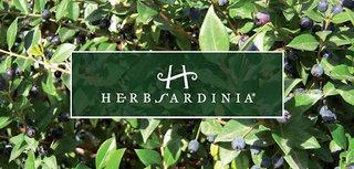 Herbsardinia cosmesi biologica che profuma di Sardegna