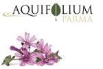 aquifolium parma