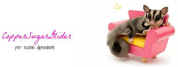 Intervista all' eco bio blog Coppersugarglider