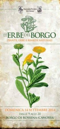 Le erbe del Borgo , piante erbe e rimedi naturali