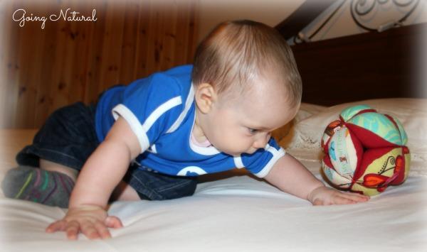 Giochi montessoriani : Montessori puzzle ball