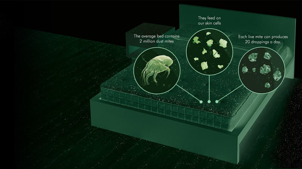 Come eliminare gli acari dal materasso con rimedi naturali