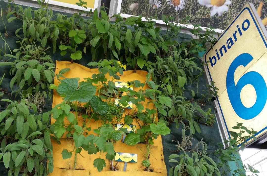 A milano 5 giardini verticali per conoscere le erbe delle caramelle ricola for Giardini verticali milano