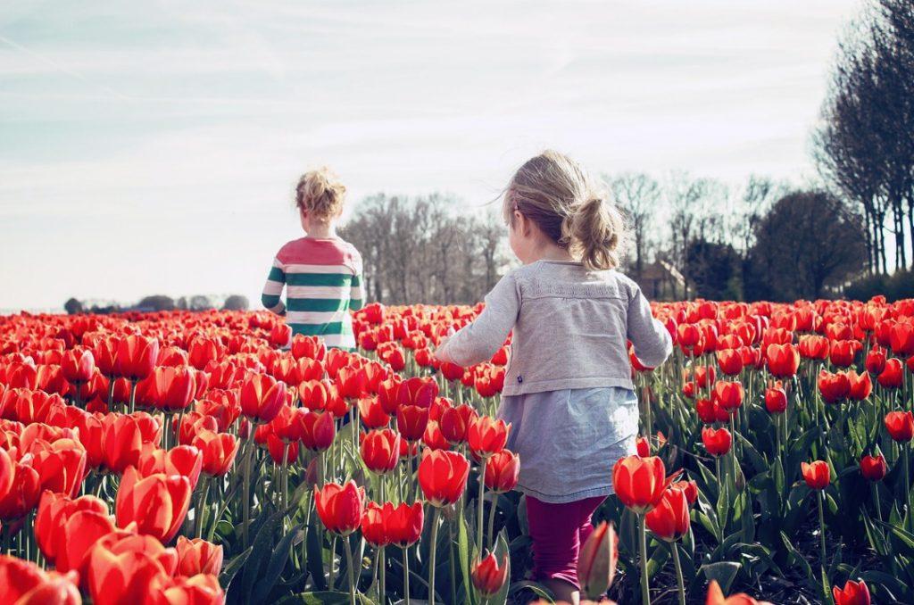 Botanica per bambini : risorse utili per insegnarla