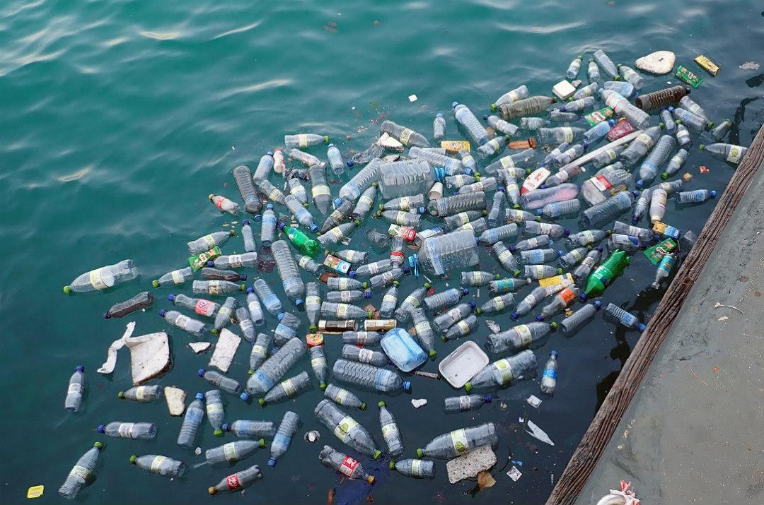 plastic free 10 passi